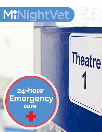 24-hour emergency care advert