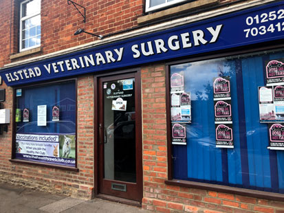 Pet Doctors Elstead consultation room