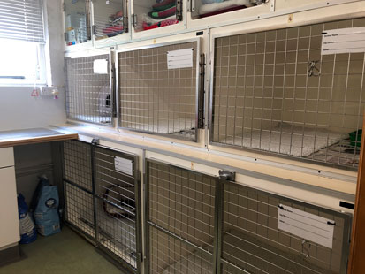 Pet Doctors Godalming kennels
