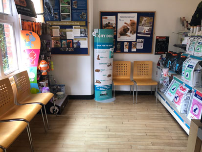 Pet Doctors Guildford waiting area