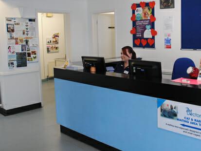 Reception at Pet Doctors Soham